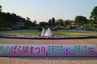 前橋敷島公園バラ園に行って来ました~♪ - からっ風にのって♪