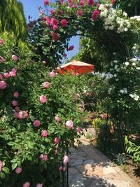 第2ガーデンへようこそ - Rose&Farm