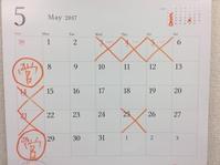 5月月末の日曜営業のお知らせです。 - 浅草 田原町の整体院 掛川カイロプラクティックのブログ