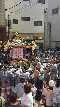 三社祭 2017 - 浅草 田原町の整体院 掛川カイロプラクティックのブログ