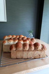 ファーストレッスンのパン - KuriSalo 天然酵母ちいさなパン教室と日々の暮らしの事
