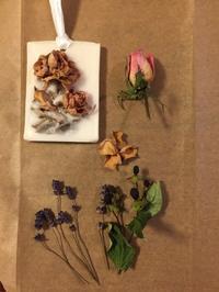 ナチュラルな防虫剤パチュリ - tecoloてころのブログ