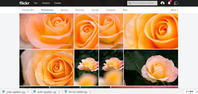 Flickr、変わらないことを願う! - Darjeeling Days
