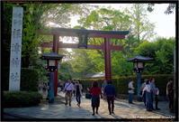 根津神社 - TI Photograph & Jazz