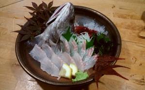 25日・木・釜ごと借りて食べるほど美味い!!なら、タチウオと一緒に釣って食べてみておくんなもし(^▽^) - 愛媛・松山・伊予灘・高速遊漁船pilarⅢ海人本日の釣果