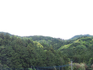 2017年  里山の雑木林のオオクワ求めて 下見と樹液採集  1日目 - Kuwashinブログ
