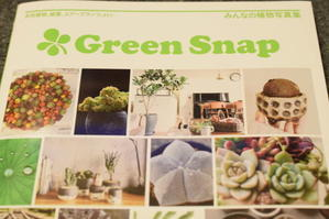雑誌掲載*Green Snap - 小皿ひとさら