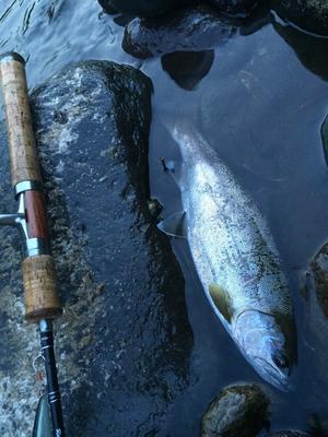 ・FISHING REPORT - FISHING SHOP-ONO BLOG