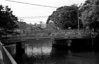 河川周辺(その5) - そぞろ歩きの記憶