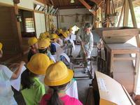 新しい発見!/かわいいお客様 - 千葉県いすみ環境と文化のさとセンター