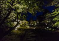 無鄰菴~新緑ライトアップ - 鏡花水月