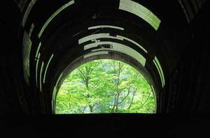 2017年剣山スーパー林道-01♪雲早トンネル・ファガスの森♪ - すえドンのフォト日記