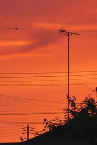 五線譜と落日 - 「美は観る者の眼の中にある」