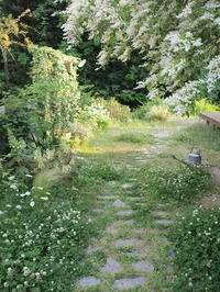 初夏の庭 5.23 - コロニヘーヴ