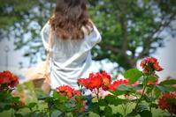 花摘む女性 - 片眼を閉じて見る世界には・・・。