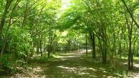 しかしですね~~ 町田樹の『ドン・キホーテ』は… - Fouko