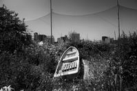 痕跡 - Photo & Shot