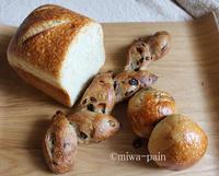 ルヴァンエピは一度にいくつ? - パンある日記(仮)@この世にパンがある限り。
