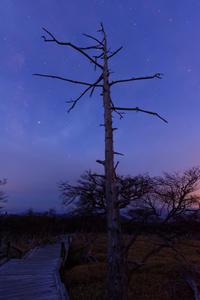 夜明けの正木峠 ① - katsuのヘタッピ風景