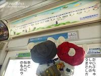 鎌倉・長谷その1 - ぶうぶうず&まよまよの癒しの日記