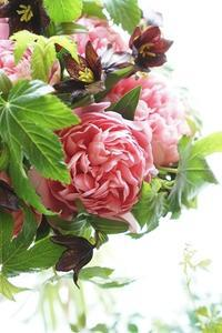 黒百合と芍薬エッジドサーモンのブーケ、うっとり♪ - お花に囲まれて