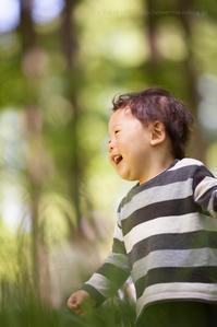 新緑のメタコセイアの森で 水元公園 - Full of LIFE