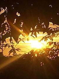 夜明け - セレンディピティな時間
