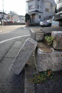 聖蹟桜ケ丘スナップ その45 - Quetzalcóatl 2