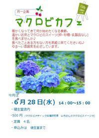 マクロビカフェ 6月の予定 - 自然食品専門店 健生堂です☆