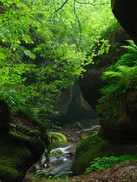 雨の峡谷 - デジタルで見ていた風景