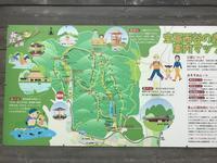ワンコと西谷の森散歩 - 宝塚マドン