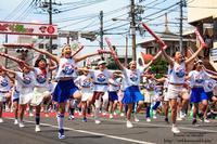 第50回福山ばら祭2017@広島県 - *花音の調べ*