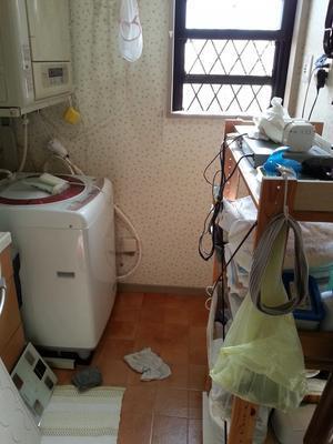 洗濯機の後ろを掃除する - 柴犬 ひろゆきと さもない毎日&週末自宅カフェ里音 (りをん)一之江・笑い療法士のいるカフェ