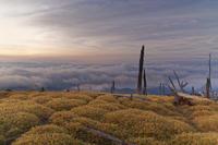 夜明けの正木峠 ② - katsuのヘタッピ風景