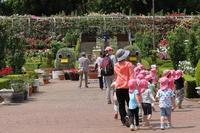 800品種、7,500株のバラ園は、眺め良し、香り良し(千葉県、習志野市、谷津バラ園) - 旅プラスの日記