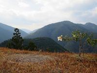 ようこそ熊野へ / introduction - KIGA熊野・高野英語ガイドの会