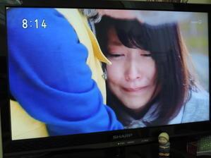 そして今日も泣く(T_T)/~~~ - 自画自賛の庭(*^_^*)からの~ベランダばんざ~い!