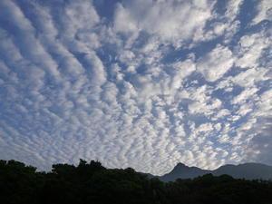 5月26日雲に… - a little tiny day