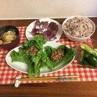 ミンチのサラダ菜巻 - 幻の庭