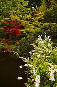 皐月の庭園 Ⅲ - 風の香に誘われて 風景のふぉと缶