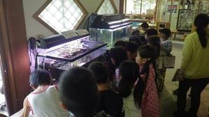 楽しい課外授業! - 千葉県いすみ環境と文化のさとセンター