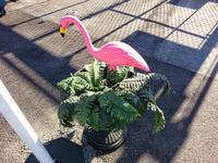 人気のPink Flamingo 再入荷しました! - Knotts Berry  open 準備!