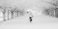 --- 相合 --- - Rphotography
