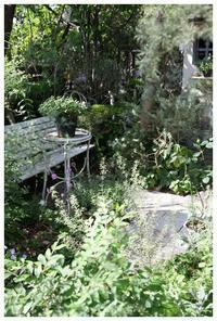 natuのナチュラルガーデンの庭 - natu     * 素敵なナチュラルガーデンから~*     福岡でガーデンデザイン、庭造り、外構工事をしてます