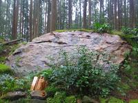 we are living with nature in nature・自然とともに生きる - KIGA熊野・高野英語ガイドの会