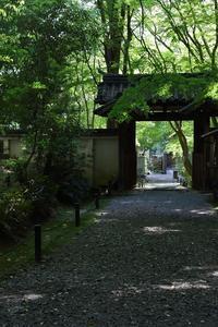 京都~初夏② 洛西 - miyabine's フォト日記2~身の周りのきれい・可愛い・面白い~