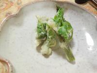 アイコの天ぷら - 地上50mでも野菜はできました、そして3mへ