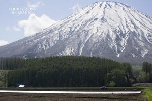 春耕山麓 - ekkoの --- four seasons --- 北海道