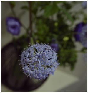 涼しげ花器で - tamins の花と空と月と☆