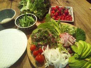 サラダの季節 - べじたぶる♪ふぁいん晴苗農園
